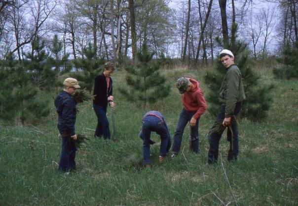 1967: Planting Trees